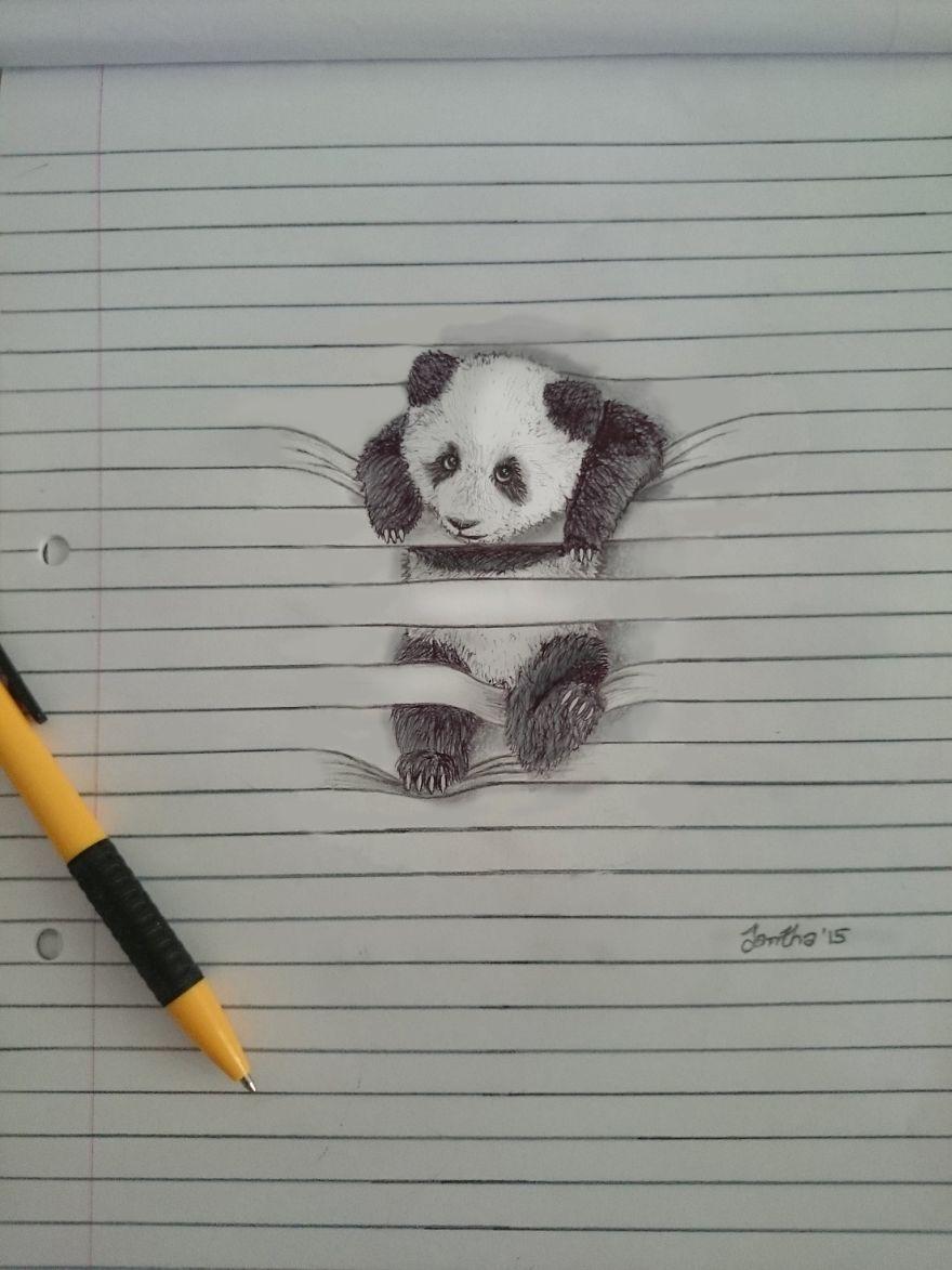 Drawing Lines In D : Neslyšící malířka z jihoafrické republiky kreslí nádherné