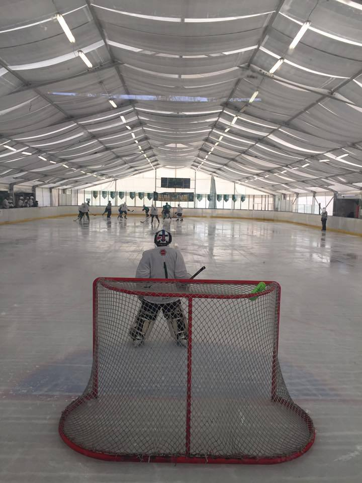 Photo of Exhibiční hokejový turnaj vBudapešti
