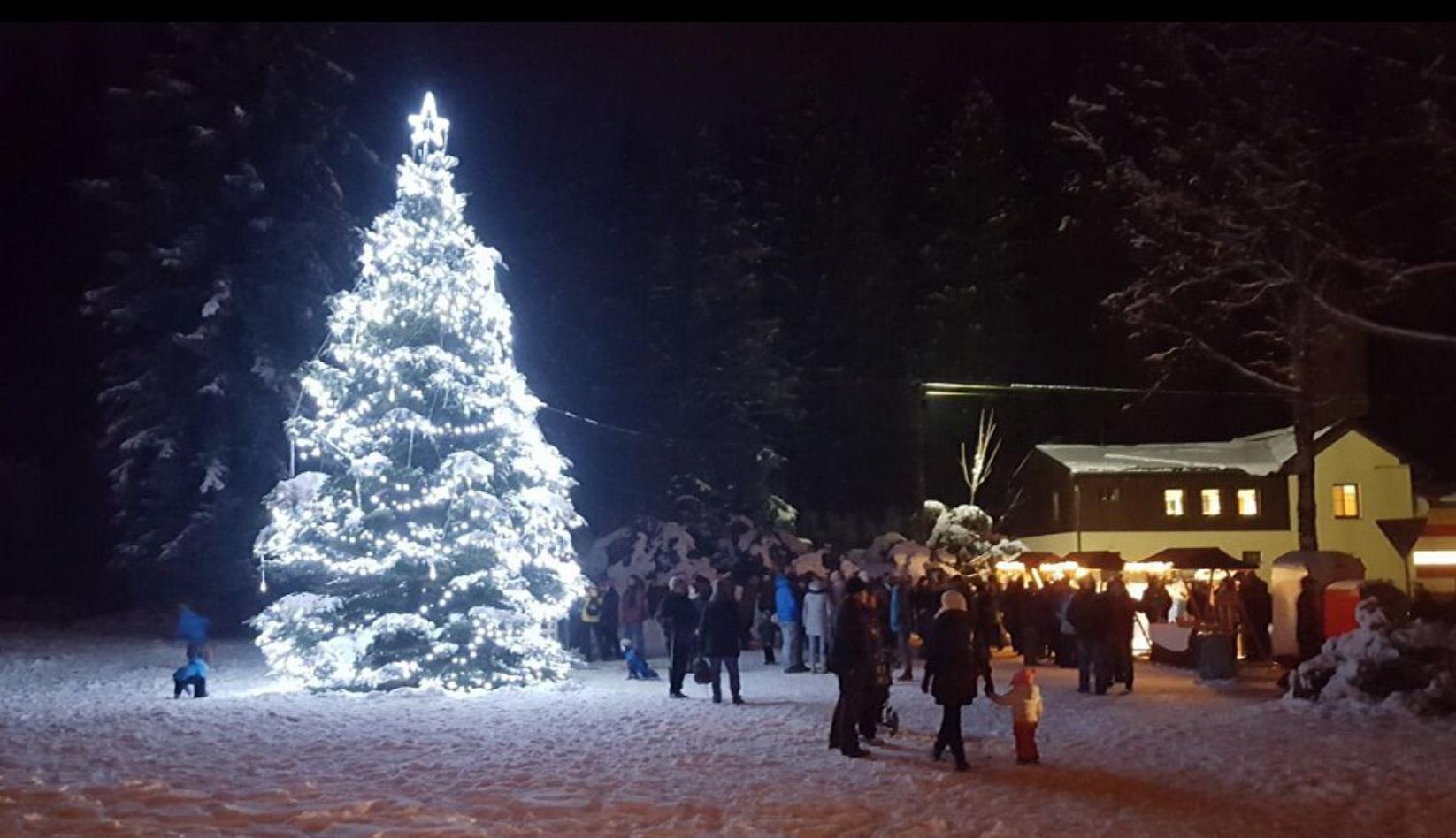 Photo of Neslyšící hlasovali pro vánoční strom vLipové