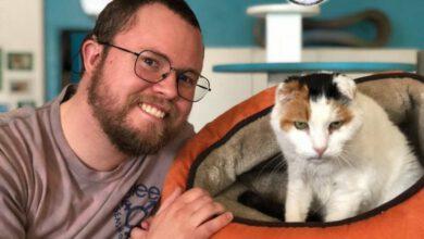 Photo of Neslyšící kočka zulice je zachráněna, našla nového perfektního majitele!