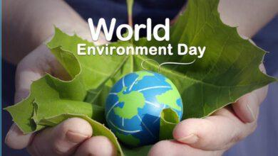 Photo of Mezinárodní den životního prostředí