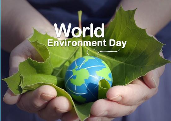 Mezinárodní den životního prostředí – Tiché zprávy