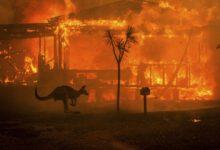 Photo of Neslyšící australská rodina ztratila domov pozničujícím požáru