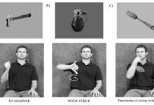 Photo of Znakový jazyk pomáhá pochopit, jak funguje mozek
