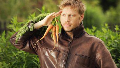 Photo of Máte rádi mrkev? Oslavte zítra její svátek!